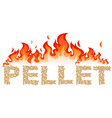 pellet written with flames vector image