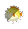 Sea fish animal vector image vector image