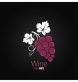 wine grapes design background vector image vector image