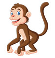 cute bamonkey cartoon on white background vector image vector image