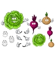 Cute cartoon cabbage beet onion vegetable vector image vector image