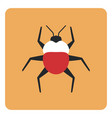 egyptian bug on a white background vector image vector image