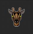 giraffe logo design template giraffe head icon vector image