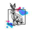 hand drawn hare with frame and abstraction vector image