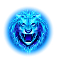 Head of fire lion vector image vector image