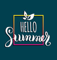hello summer background fun vector image