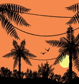 Sunset in the tropical jungle vector image vector image