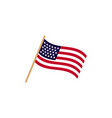 usa flag graphic design template isolated vector image vector image