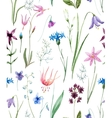 Watercolor wild flowers pattern vector image