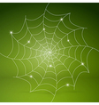 white cobweb on green background vector image vector image