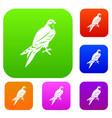 falcon set collection vector image vector image