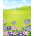 Floral Field Background vector image vector image