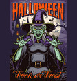 halloween night colorful poster vector image