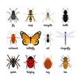 Insects icons vector image vector image