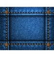Jeans Distress Texture for your design vector image