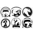 labels emblems with wild bear vector image vector image