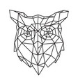 low poly an owl head outline drawing retro vector image