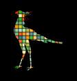 secretary bird mosaic color silhouette animal vector image