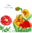 Watercolor background with red poppy-02 vector image