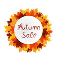 autumn leaves sale circle label isolated on white vector image