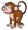 monkey with dizzy eyes on white background vector image vector image