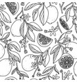 outlined grapefruits summer pattern vector image