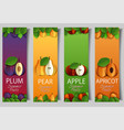 paper cut apple pear apricot plum banner vector image vector image