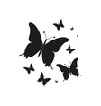 silhouettebeautiful butterflies isolated on a vector image vector image