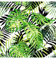 tropical plants watercolor pattern black and vector image vector image
