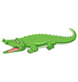 a green crocodile open mouth vector image