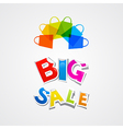 Big Sale Sticker Title and Colorful Bags vector image vector image