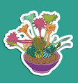 cute cartoon cactus and succulents vector image