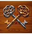 Golden and silver crossed shiny vintage keys on vector image