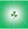 shamrock green leaf vector image vector image