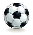 vector soccer ball vector image