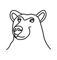 animal bear icon design clip art line icon vector image vector image