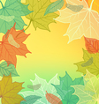 Autumn Background with fallen leaves vector image