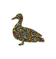 duck bird color silhouette animal vector image vector image
