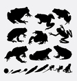 Frog and metamorphose silhouettes vector image vector image