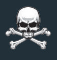 pirates jawless skull and bones vector image