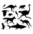 setblack australia animals silhouette vector image vector image