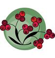 berries background vector image vector image