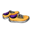 color sketch of sneakers vector image