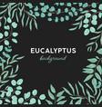 eucalyptus gunnii hand drawn background design vector image