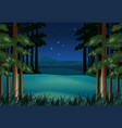 forest scene at night with stars vector image