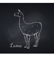 lama outline icon chalkboard style vector image