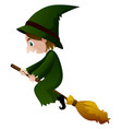 old witch in green dress on the broom vector image vector image
