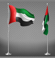realistic flags of united arab emirates vector image