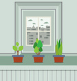 Set Of Pot Plants On Windowsill vector image vector image