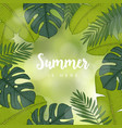 summer greeting card invitation frame made of vector image vector image